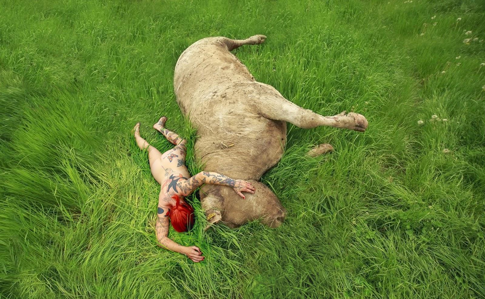 oh la vache-photo-lydie-jean-dit-panel