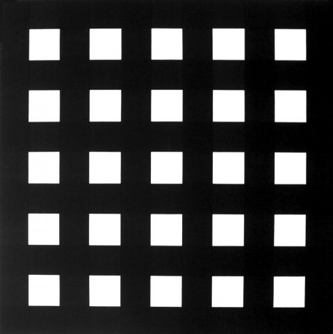 morellet_impitoyableconfrontation